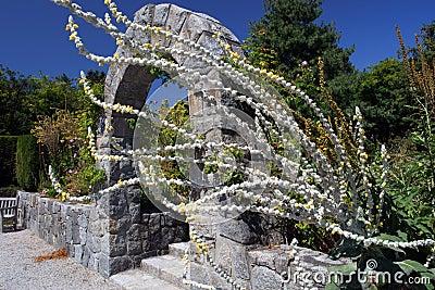 Van Dusen Gardens, Vancouver Editorial Photography