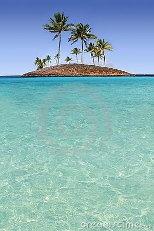 Van het de palmeiland van het paradijs het tropische turkooise strand