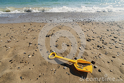 Vanga sulla spiaggia