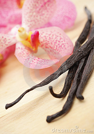 Vanilla beans and orhid flower