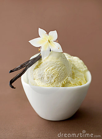 Vanilla on ice-cream in a bowl