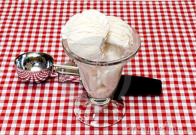 Vanilla Ice Cream and Scoop