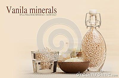 Vanilla minerals
