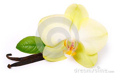 Vanilla sticks with flower