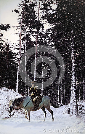 Vaquero en paisaje nevoso