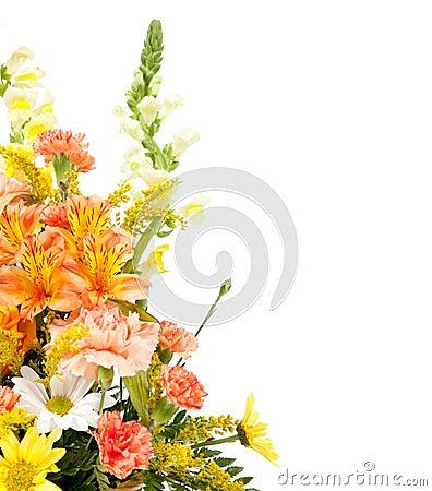 Varias flores dispuestas en cesta en blanco