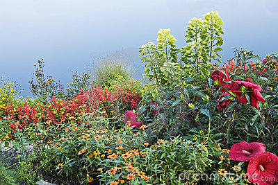 Varied Garden