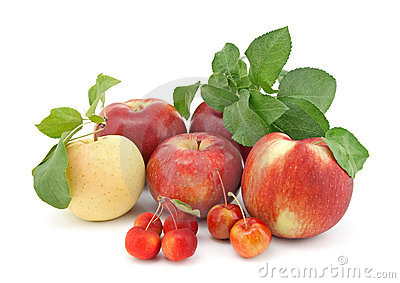 Variety of apples on white background