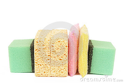 Variety of cleaning sponges