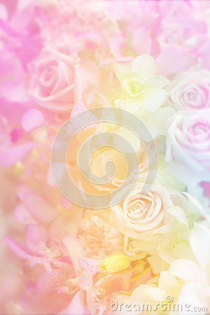 Free Variety Flower Background In Pastel Color Stock Images - 63550354