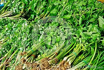 Variety of fresh vegetables in market