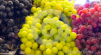 Variety of grapes
