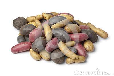 Variety of heirloom potatoes