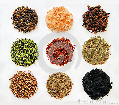 Variety of spices isolated