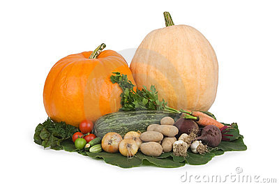 Variety of vegetables.