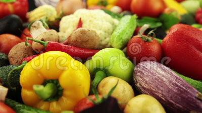 Variety of vegetables. Fresh vegetables: cabbage and carrot and corn and cucumber and garlic and onion and pepper and potatoes and salad and tomato and mushrooms