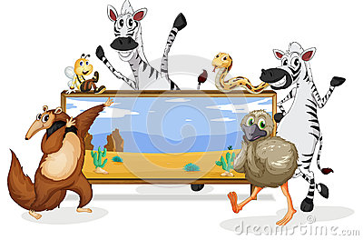 Various animals and board