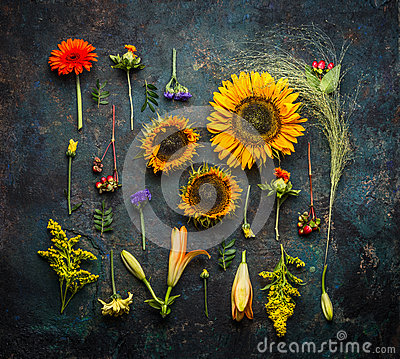 Free Various Autumn Plant And Flowers On Dark Vintage Background, Top View Stock Photos - 75781243