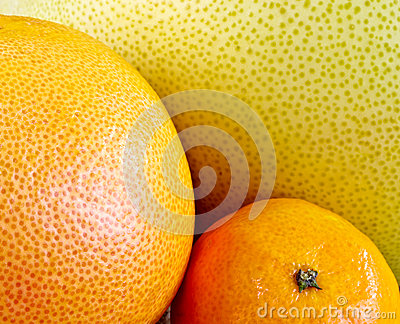 Various citrus fruit