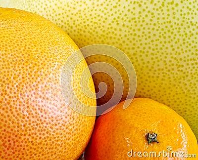 closeup of citrus fruit