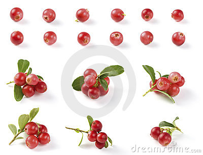 Various Cranberries