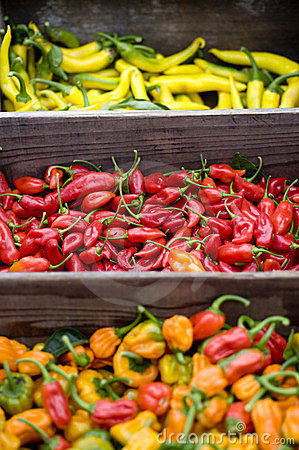 Various hot peppers