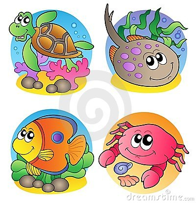 Various marine animals images 1