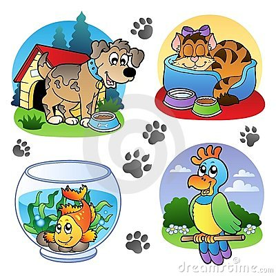 Various pets images 1