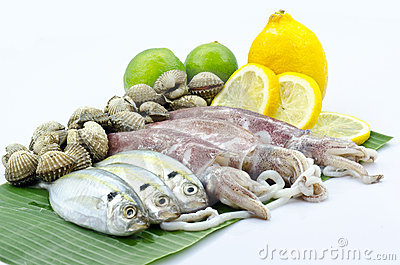 Various Raw Seafood Stock Photography - Image: 21828942