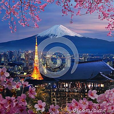 Free Various Travel Destination In Japan Stock Image - 35454311