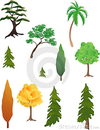 Free Various Trees Stock Image - 3134761