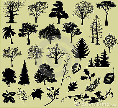 Various Trees and Leafs