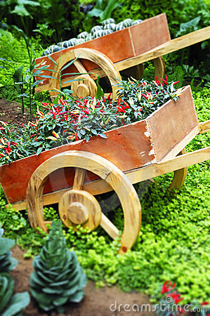 Free Various Vegetable In Garden Stock Image - 5051801