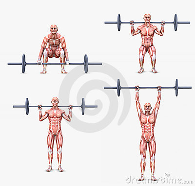 Various weight lifting / bodybuilding postures