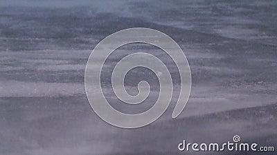 Varreduras do blizzard do inverno através do asfalto filme