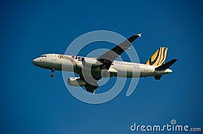 Vías aéreas A320-232 del tigre en final Foto de archivo editorial