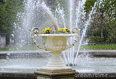 Vase with flowers in city garden