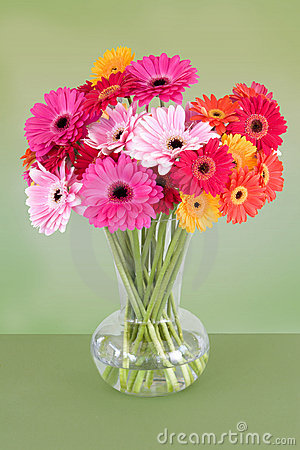 Free Vase Of Colorful Daisies Stock Photo - 5214760