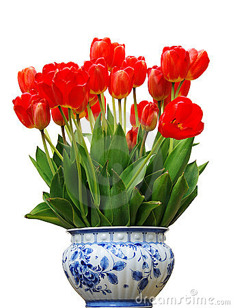 Free Vase With Red Tulips Royalty Free Stock Photos - 4997468