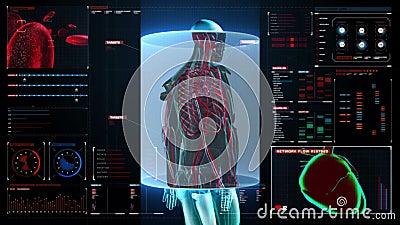 Vaso sanguíneo da exploração no corpo masculino no painel da indicação digital opinião do raio X ilustração do vetor