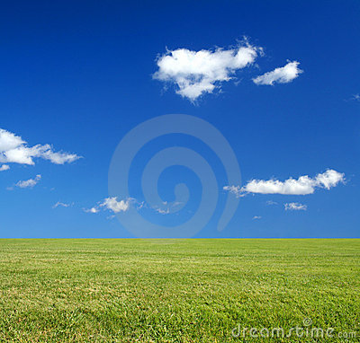 Vast green grass field and blue sky eco-friendly c