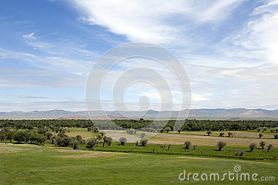 Vast Mongolian Landscape