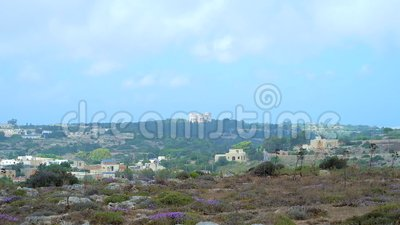 Buskett Gardens in Siggiewi, Malta. The vastness of Buskett Gardens with woodland, sclerophyllous garrigue and maquis shrubland, growing in Wied Il-Luq valley stock footage