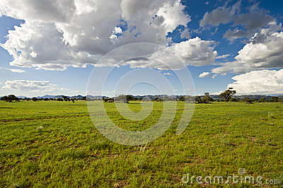 Vastness In Namibia Royalty Free Stock Image