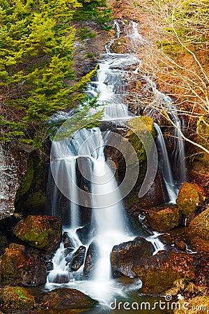 Vattenfall i höstskog