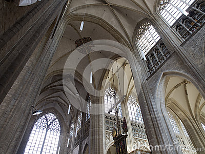 Vault Of St. Peter Church in Leuven