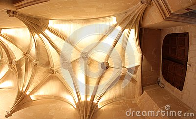 Vaulted Ceiling at Chateau de Chenonceau France