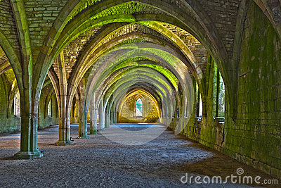 Vaulted ceilings in Fountains Abbey