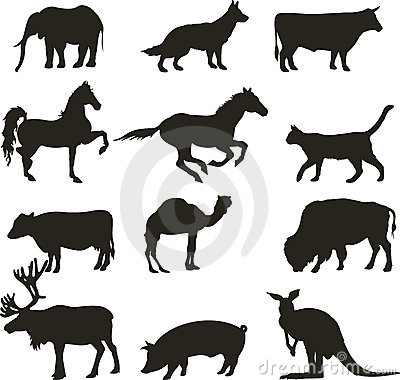 Free Vector Animals Royalty Free Stock Photo - 7411275