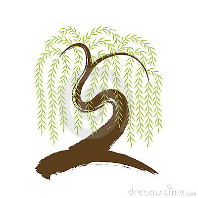 vector: artistic brushwork willow tree